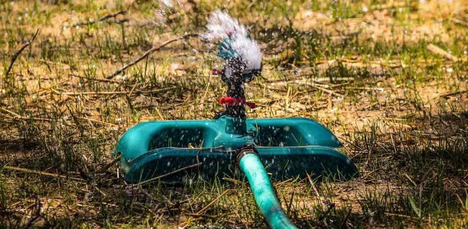 jak nawadniać ogród